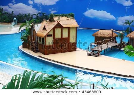 коттедж Тропический остров иллюстрация пляж пейзаж Сток-фото © colematt