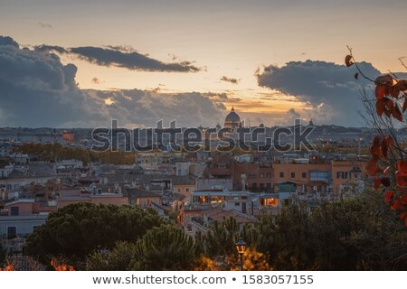 Ancient Rome rooftops and Vatican evening panoramic view Stock photo © xbrchx
