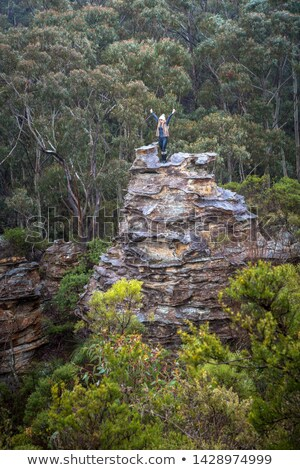 Hiker exhilaration after climbing a pagoda in mountains Stock photo © lovleah