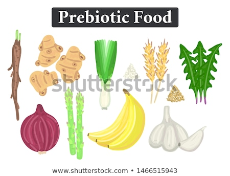 Set of prebiotic food. Nutrition. Nondigestible fibers. Healthy supplement Stock photo © user_10144511