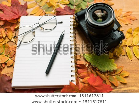 Photocamera, blank page of copybook with eyeglasses and pen and autumn leaves Stock photo © pressmaster