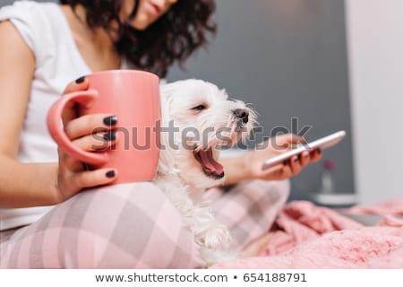 Сток-фото: Happy Yawning Young Woman In Pajama With Coffee