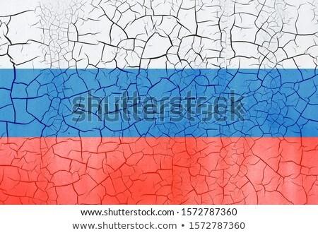 Russian flag on dry cracked earth Stock photo © olira