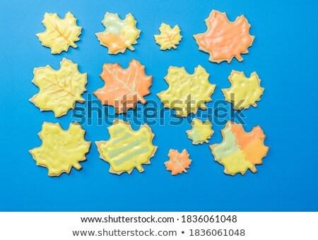 Automne feuille bleu Photo stock © HectorSnchz