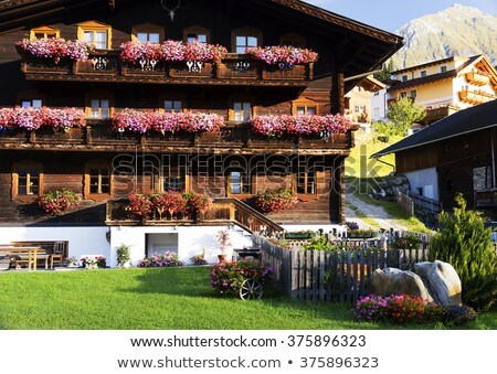Flower-box in the Alps Stock photo © manfredxy