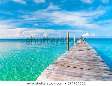 summer landscape  stock photo © OleksandrO
