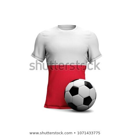 Polen voetbal voetbal bal 3D Stockfoto © Wetzkaz