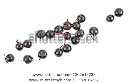 Stock photo: Elderberry on white