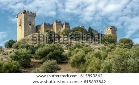 castle Almodovar del Rio, Cordoba, Spain Stock photo © neirfy