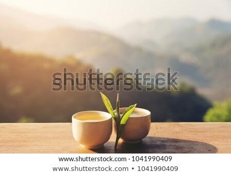 ぼけ味 緑 効果 テクスチャ 抽象的な 光 ストックフォト © jadthree