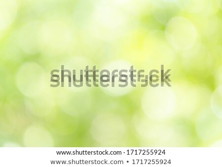 luz · verde · naturalismo · bokeh · luzes · céu · textura - foto stock © stoonn