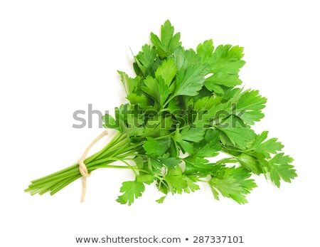 fresh bunch of parsley isolated on white stock photo © tetkoren