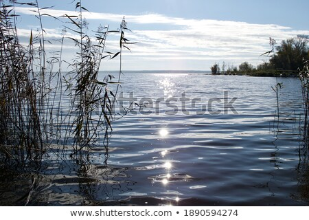 blue sky refection in the water Stock photo © compuinfoto