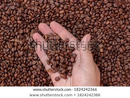 Pinch of Coffee Stock photo © HASLOO