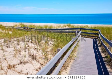 cape · cod · arenoso · pescoço · praia · Massachusetts · EUA - foto stock © lunamarina