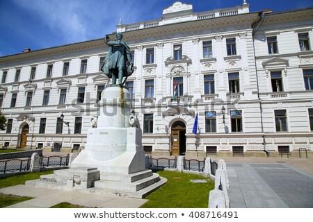 исторический здании статуя Венгрия город окна Сток-фото © digoarpi