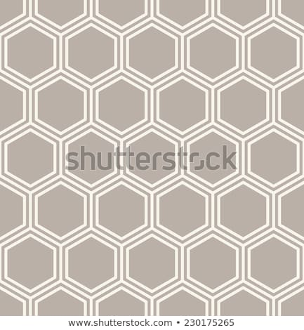 neutral · sin · costura · lineal · florecer · patrón · geométrico - foto stock © almagami