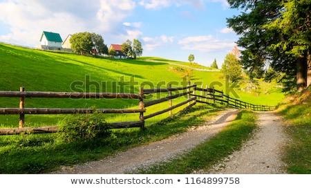 Zomer landschap houten hek berg dorp Stockfoto © Kotenko