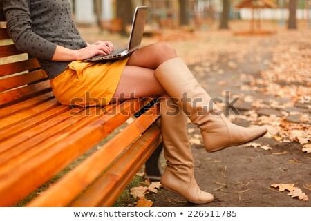 Foto stock: Mulher · freelance · trabalhando · outono · parque · pessoas