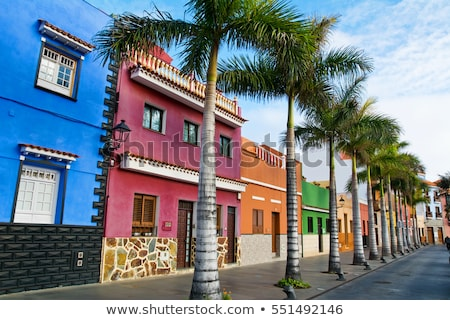 Puerto de la Cruz, Tenerife Stock photo © neirfy