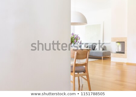 silver light switch on the wall Stock photo © tarczas