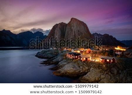 landschap · Noorwegen · kustlijn · Europa · water · boom - stockfoto © gewoldi