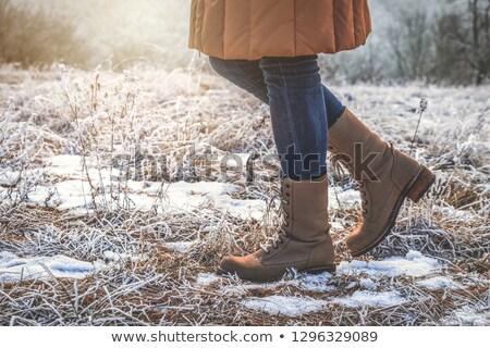 bruin · elegante · schoenen · witte · geïsoleerd · ontwerp - stockfoto © kurhan
