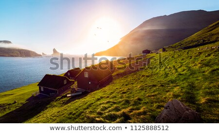 Typical landscape on the Faroe Islands Stock photo © Arrxxx