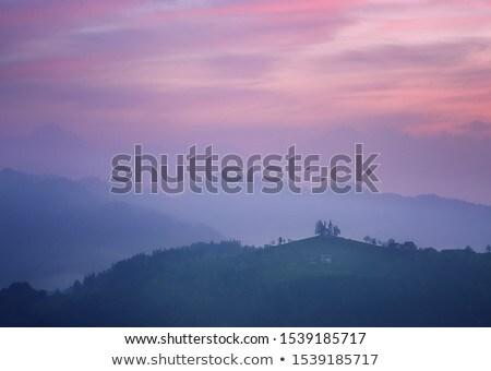 Niebla niebla caída montana árboles madrugada Foto stock © yhelfman