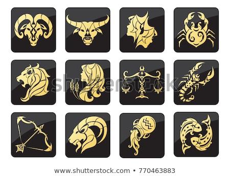 Ouro zodíaco sinais vetor conjunto dourado Foto stock © beaubelle