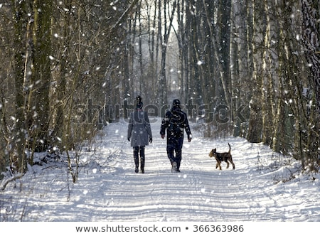 A dog walks in a snowy forest with a woman Stock photo © ElenaBatkova