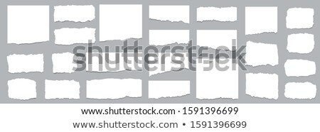 torn square of cardboard isolated on a white background stock photo © latent