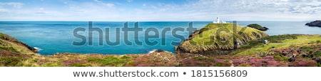 Coastline Stock photo © vrvalerian