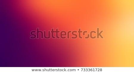 Arancione viola bella giovani bruna lingerie Foto d'archivio © disorderly