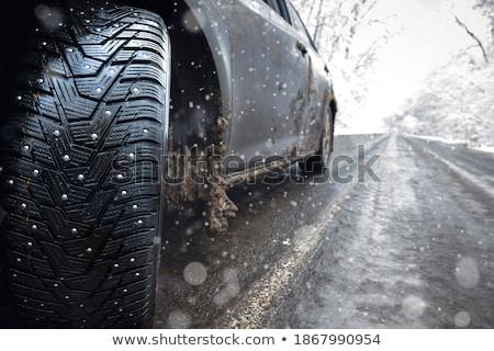 snow cover outdoors Stock photo © dolgachov