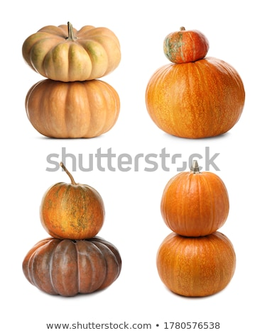 assortment of different pumpkins Stock photo © nito