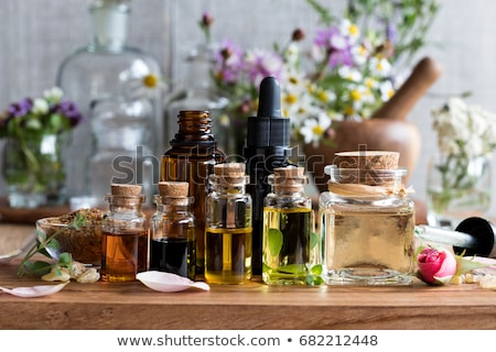 Bottles of essential oil with herbs and frankincense Stock photo © madeleine_steinbach