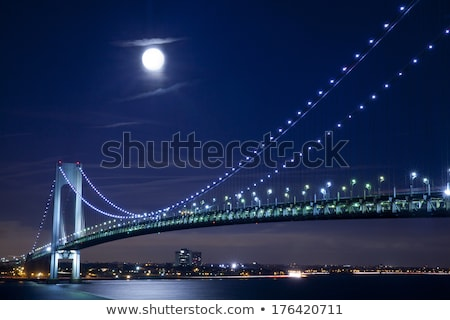Elevated View Of Illuminated Brooklyn Bridge At Night Stock photo © AndreyPopov