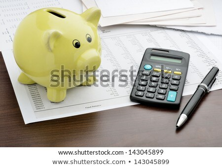 Piggy bank and money with business document, business finance in Stock photo © Freedomz
