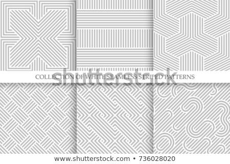 Vektör dalgalı zarif model çizgili Stok fotoğraf © ExpressVectors
