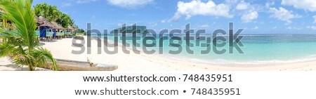 Empty beach with boat Stock photo © ivonnewierink