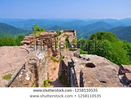 castle ruin Wegelnburg in Dahn Rockland Stock photo © LianeM