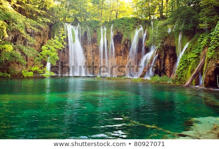 Big waterfall in the forest on earth Stock photo © bluering