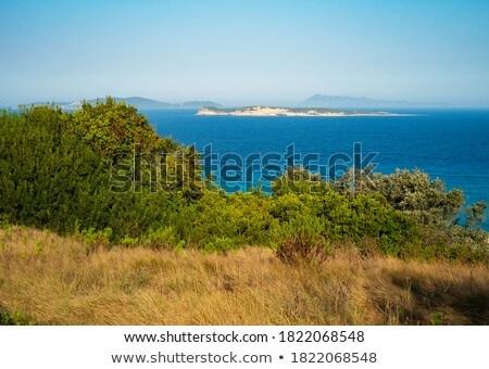 Ruig kust strand zonsondergang landschap zee Stockfoto © asturianu
