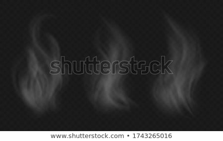 abstract fume on the white stock photo © arsgera