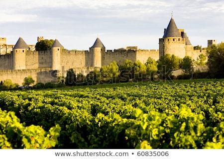 carcassonne languedoc roussillon france stock photo © phbcz