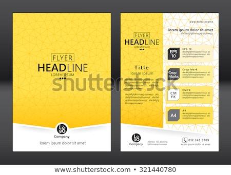 Folder Yellow Vector Icon Design Stock photo © rizwanali3d
