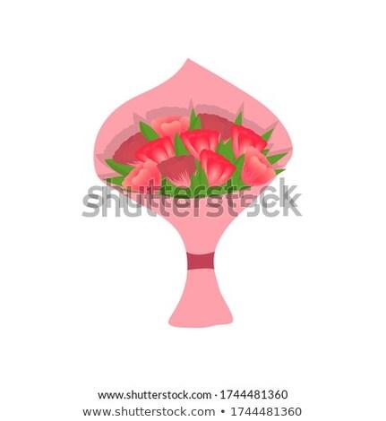rosa · frischen · Tulpen · weiß · eps · 10 - stock foto © beholdereye