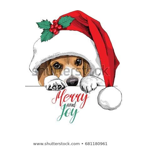 puppy christmas Beagle on white background Stock photo © Lopolo