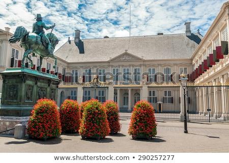 королевский дворец Нидерланды весенние цветы дома здании Сток-фото © neirfy